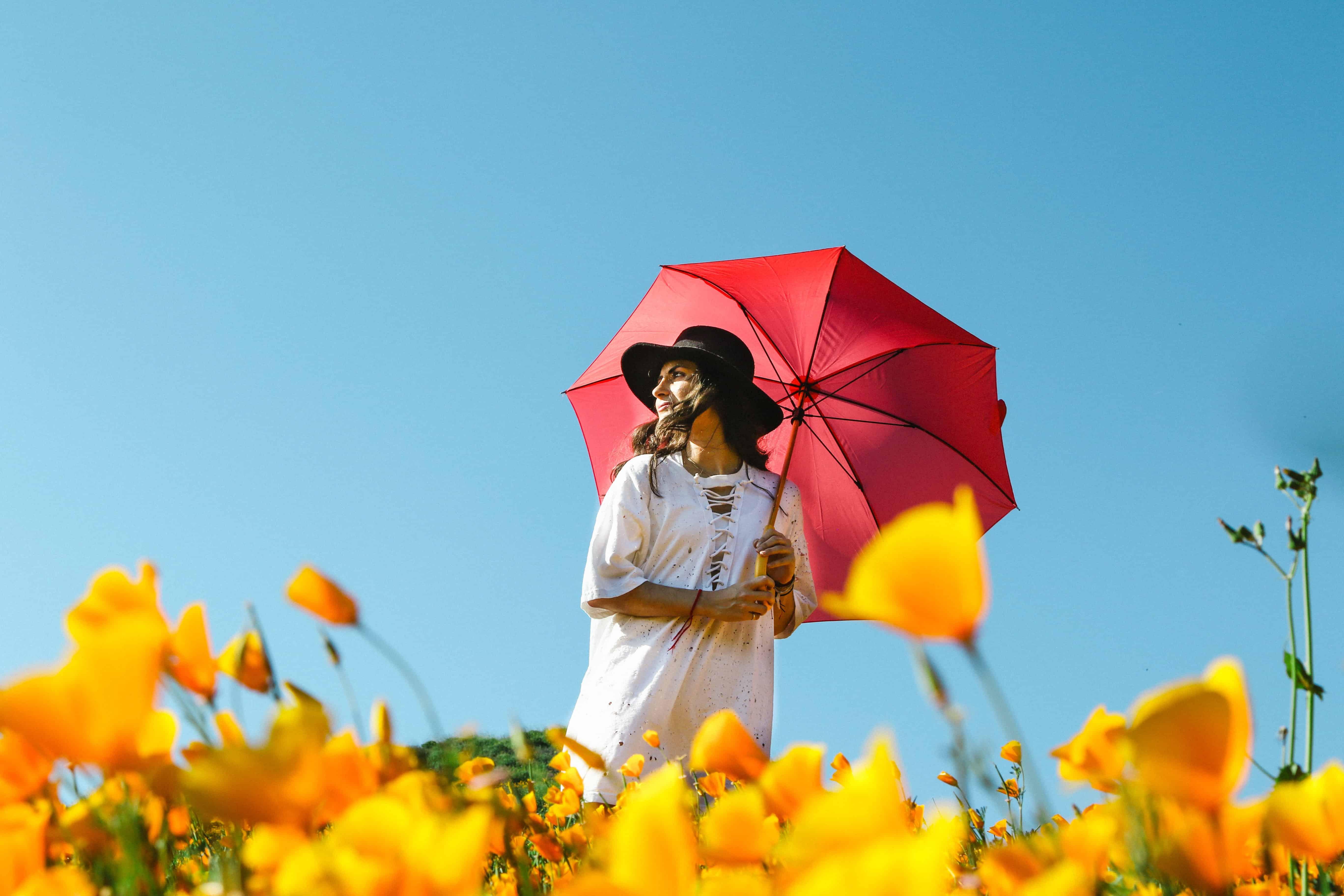 Sonnenschirm: Test & Empfehlungen (01/20)